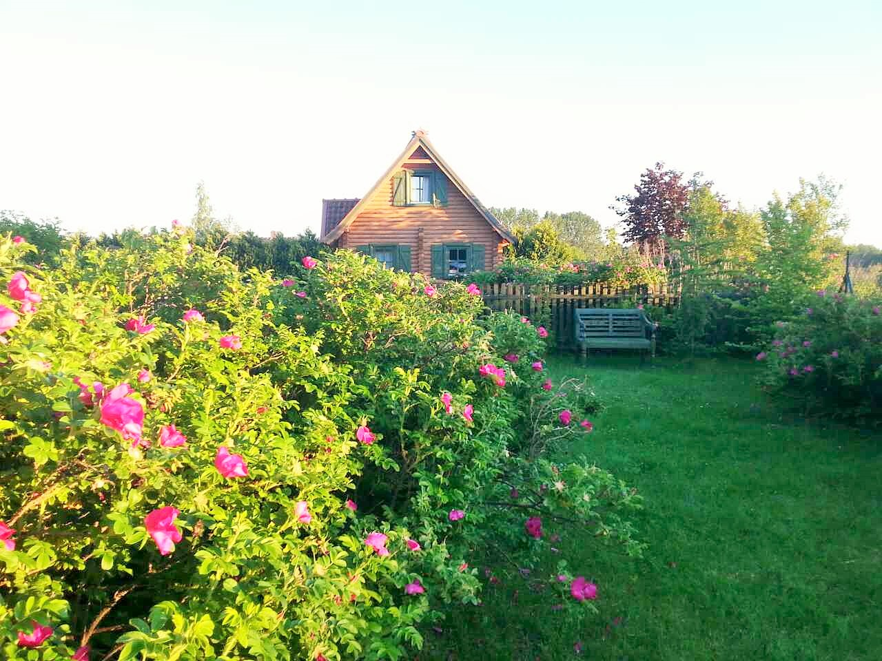 Wypoczynek na Mazurach, domki letniskowe, w naszym ogrodzie