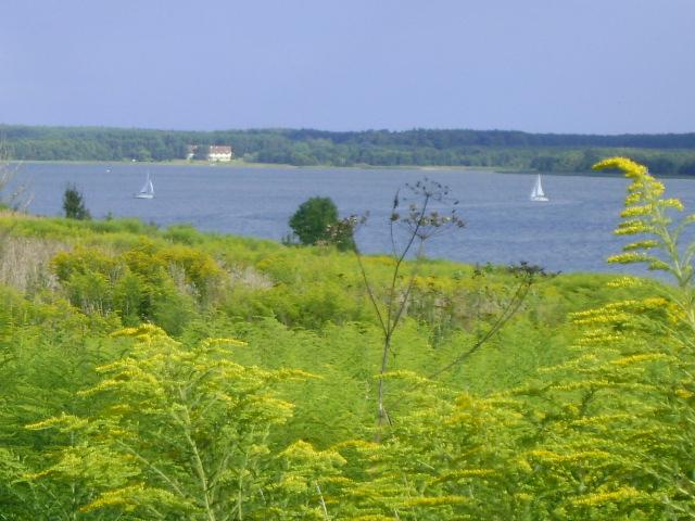 Jezioro Święcajty i kwitnące łąki