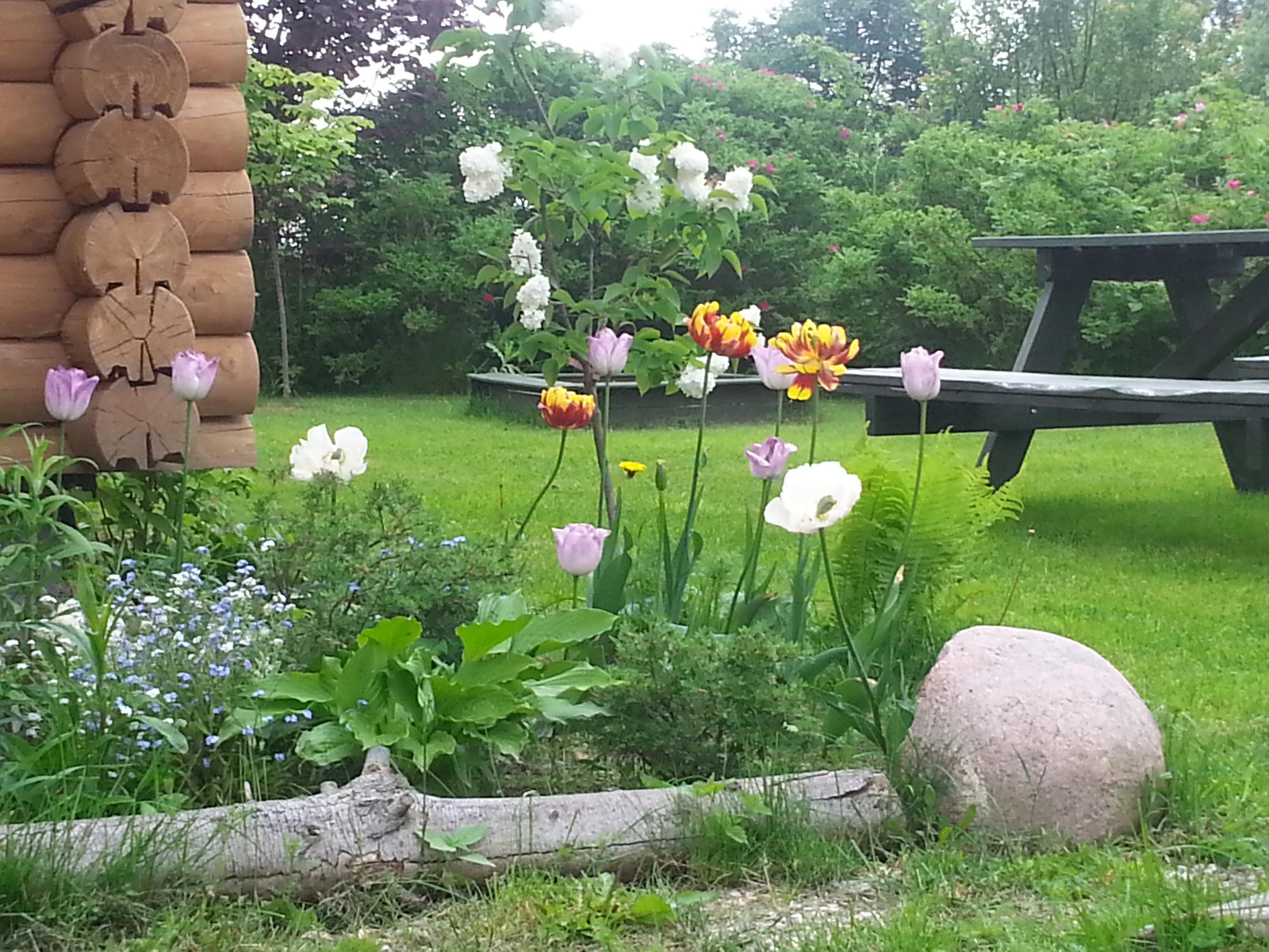 Wiosna w Naszych ogrodach. Mazury, noclegi, domki nad jeziorem, Kal, Śiwęcajty